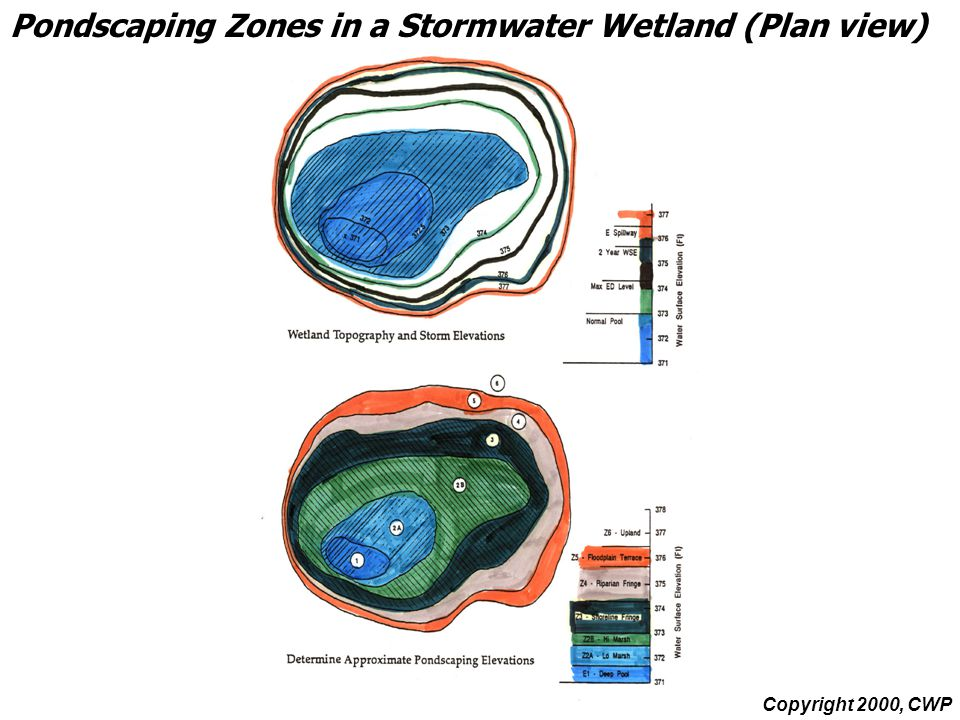 Pondscaping Zones in a Stormwater Wetland (Plan view) Copyright 2000, CWP