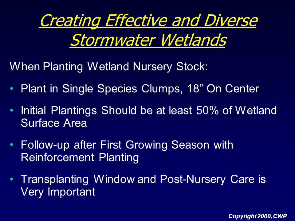 """Copyright 2000, CWP Creating Effective and Diverse Stormwater Wetlands When Planting Wetland Nursery Stock: Plant in Single Species Clumps, 18"""" On Cen"""
