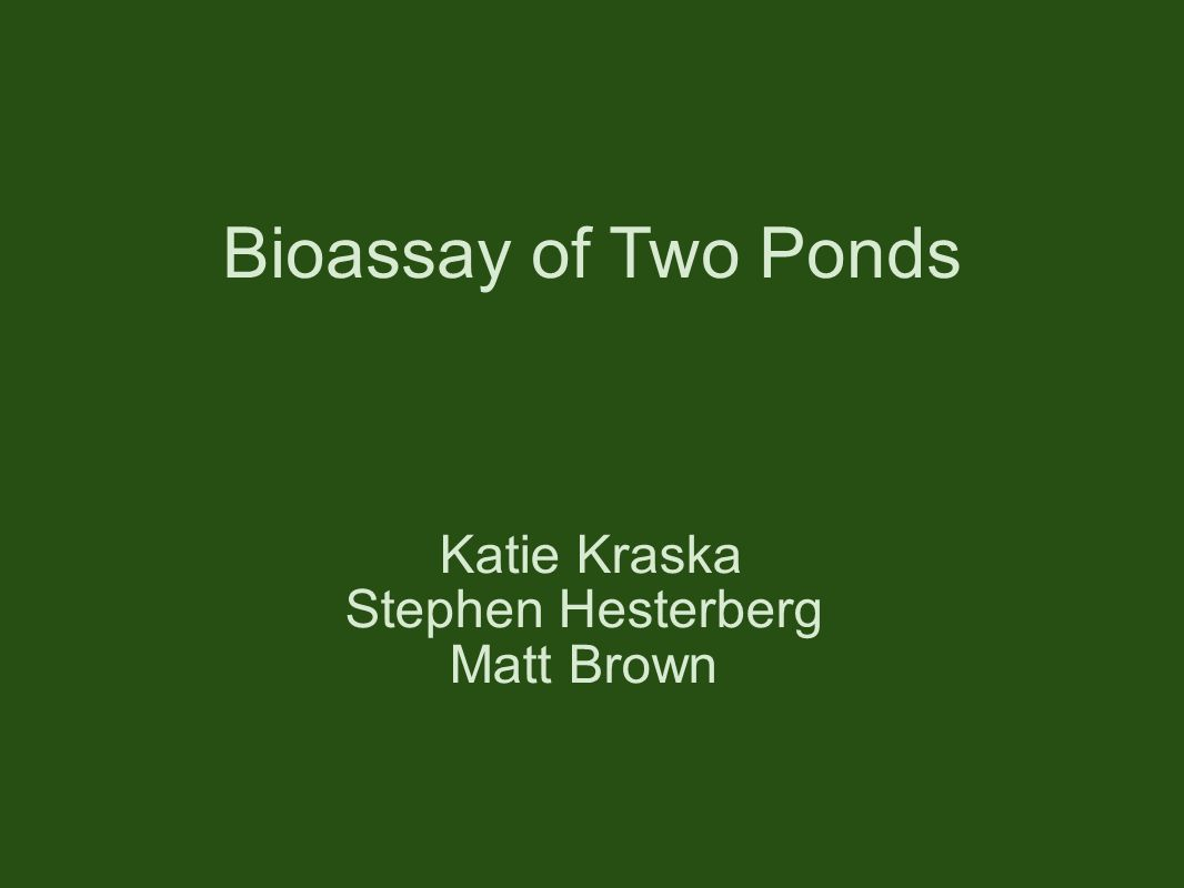 Bioassay of Two Ponds Katie Kraska Stephen Hesterberg Matt Brown