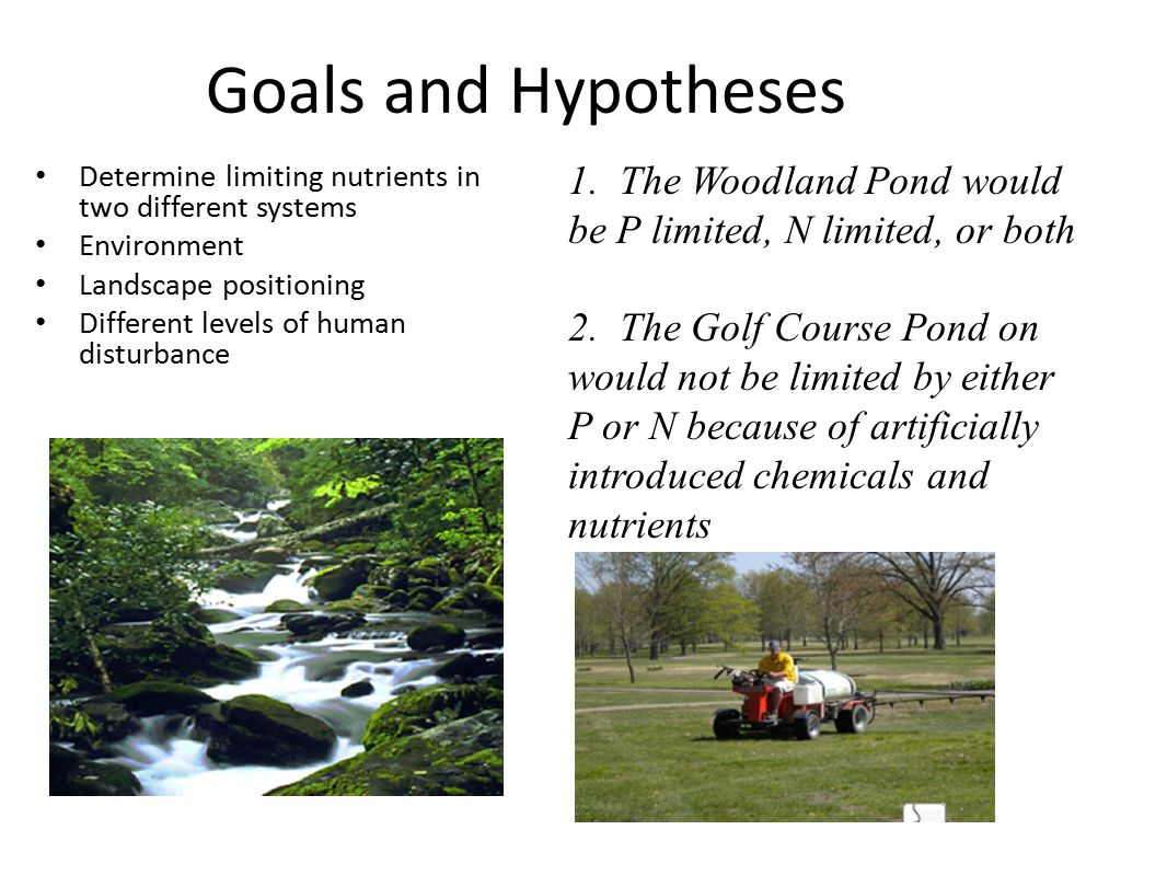 Goals and Hypotheses Determine limiting nutrients in two different systems Environment Landscape positioning Different levels of human disturbance 1.