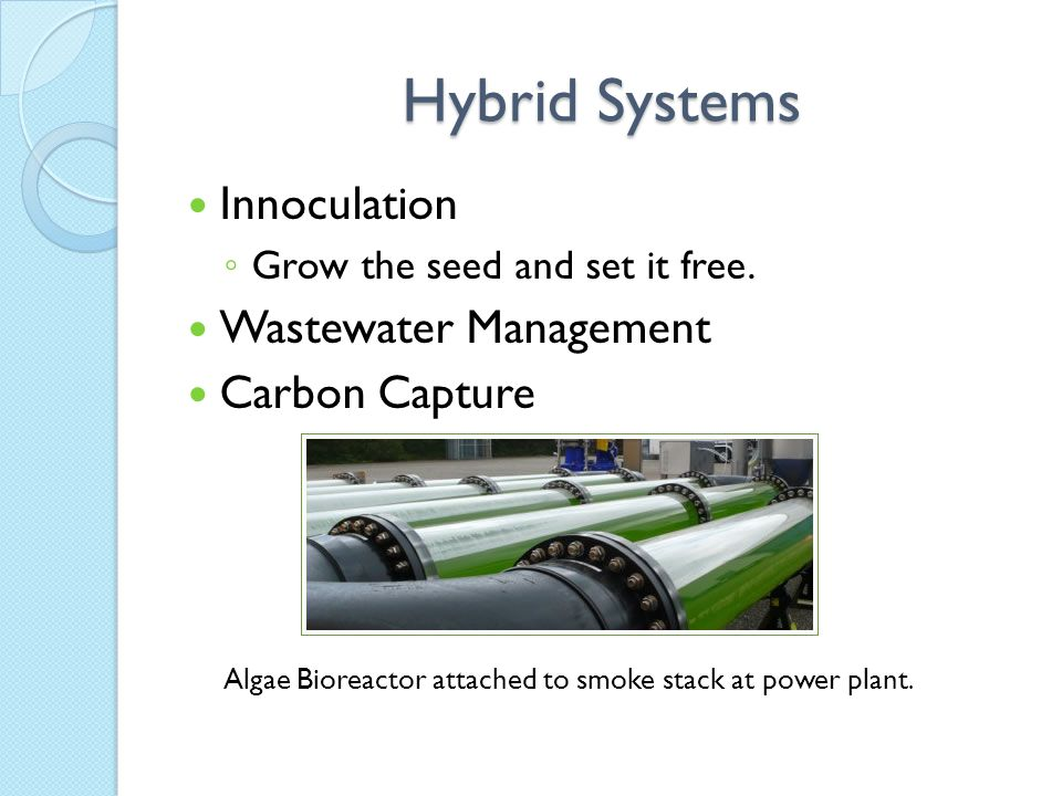 Hybrid Systems Innoculation ◦ Grow the seed and set it free. Wastewater Management Carbon Capture Algae Bioreactor attached to smoke stack at power pl