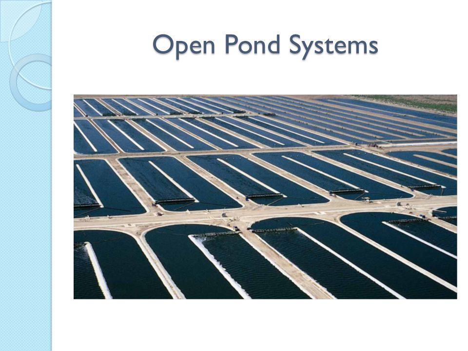 Pond Pros & Cons -Low Costs -Easy to Operate and Maintain -High Contamination Risk -Lots of Water and Space