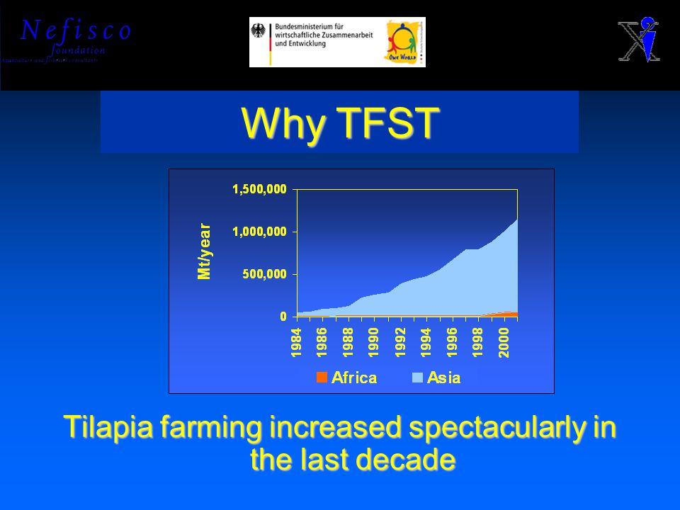 TFST inputs Tilapia data Economic data