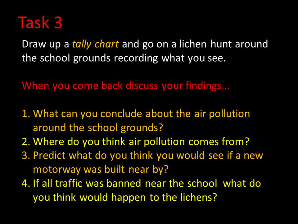 Task 3 Draw up a tally chart and go on a lichen hunt around the school grounds recording what you see.