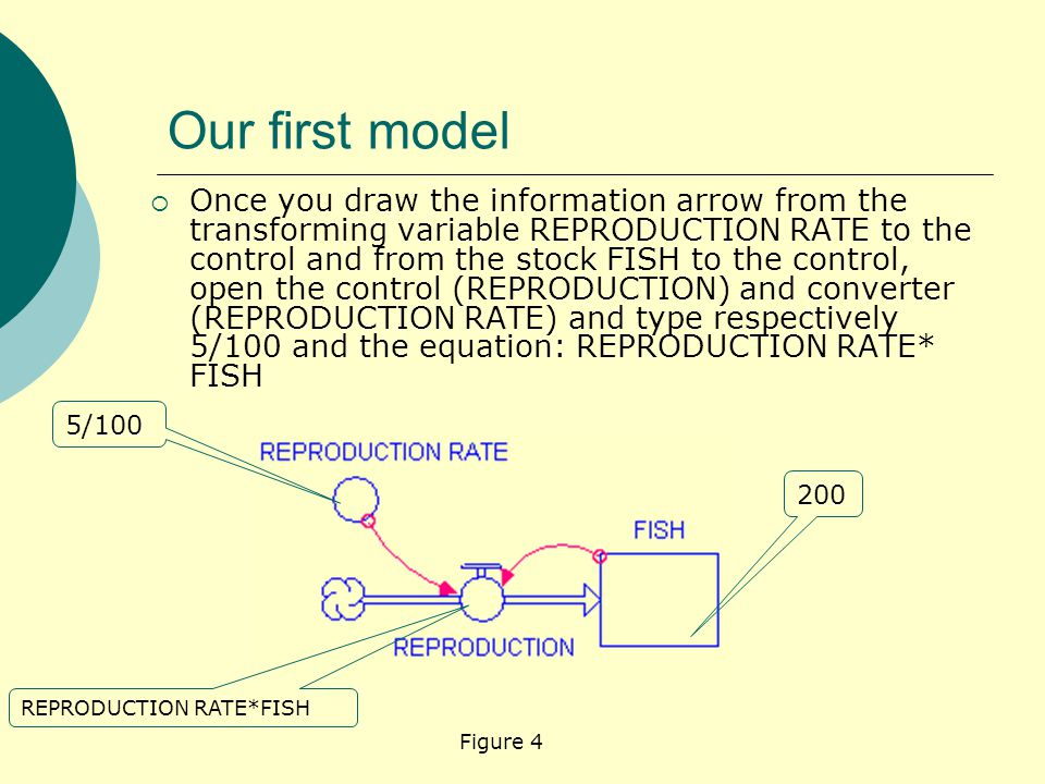 Our first model  Once you draw the information arrow from the transforming variable REPRODUCTION RATE to the control and from the stock FISH to the control, open the control (REPRODUCTION) and converter (REPRODUCTION RATE) and type respectively 5/100 and the equation: REPRODUCTION RATE* FISH Figure 4 200 5/100 REPRODUCTION RATE*FISH