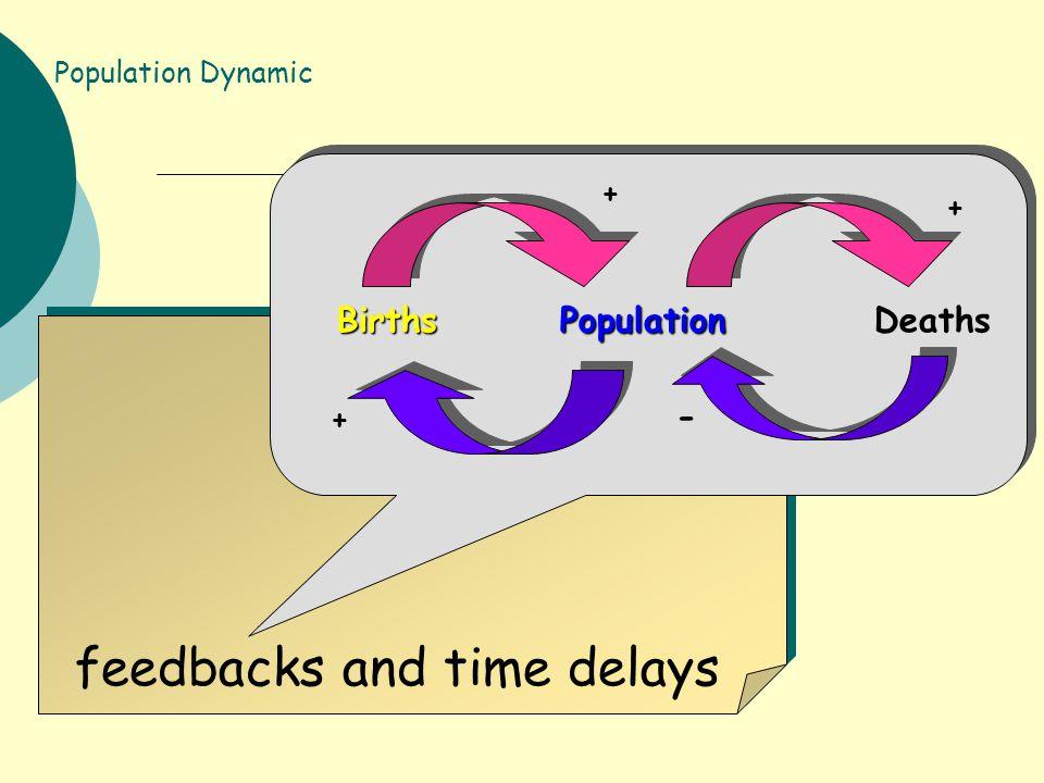 feedbacks and time delays BirthsPopulation Births Population Deaths + + + - Population Dynamic