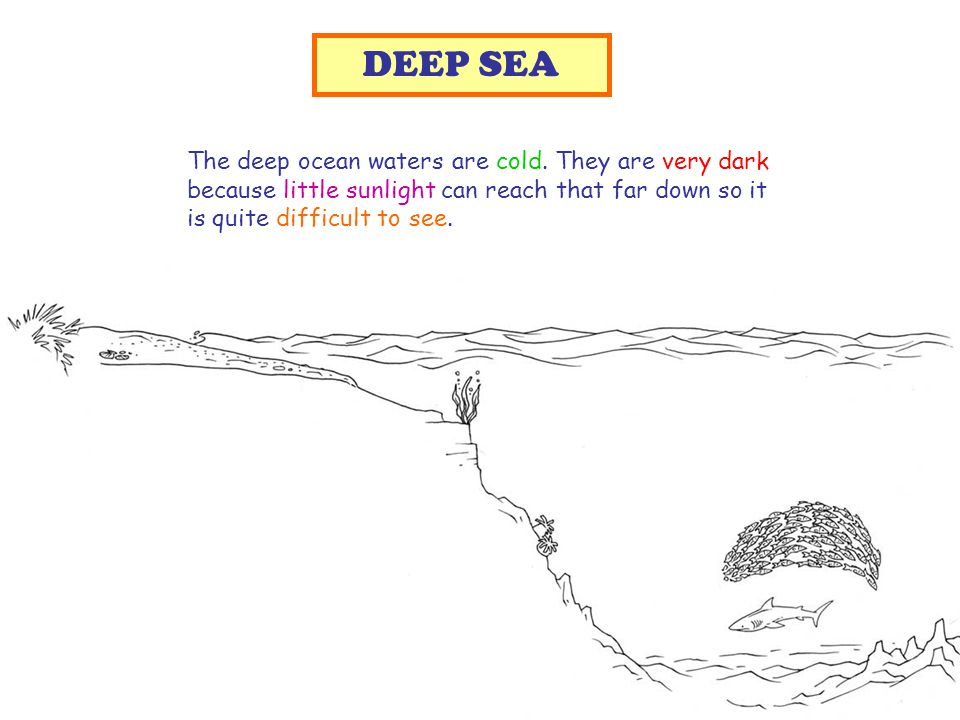 The deep ocean waters are cold.