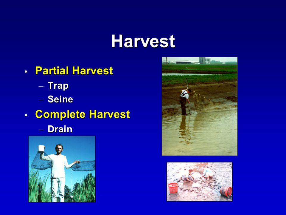 Harvest Partial Harvest Partial Harvest – Trap – Seine Complete Harvest Complete Harvest – Drain