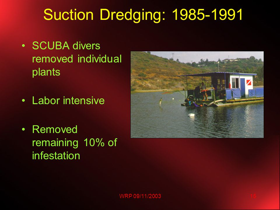 WRP 09/11/200315 Suction Dredging: 1985-1991 SCUBA divers removed individual plants Labor intensive Removed remaining 10% of infestation