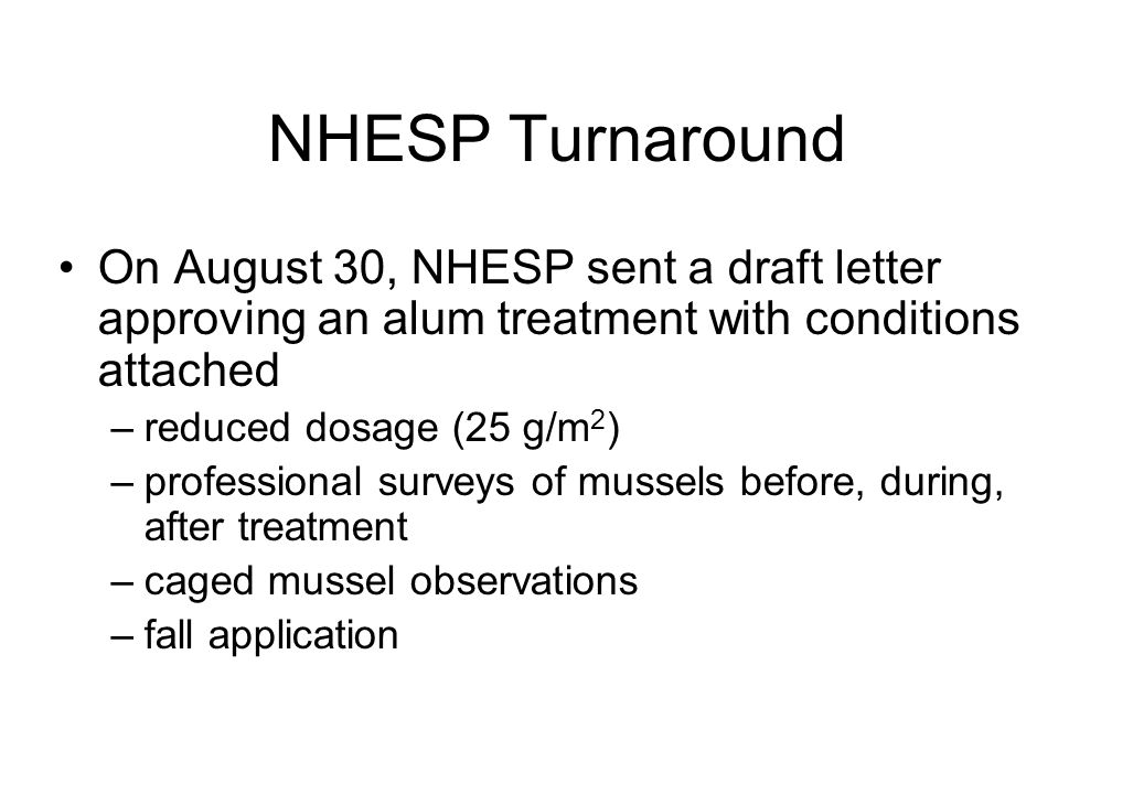 NHESP Turnaround On August 30, NHESP sent a draft letter approving an alum treatment with conditions attached –reduced dosage (25 g/m 2 ) –professional surveys of mussels before, during, after treatment –caged mussel observations –fall application
