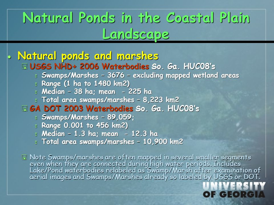 Natural Ponds in the Coastal Plain Landscape  Natural ponds and marshes <USGS NHD+ 2006 Waterbodies So.