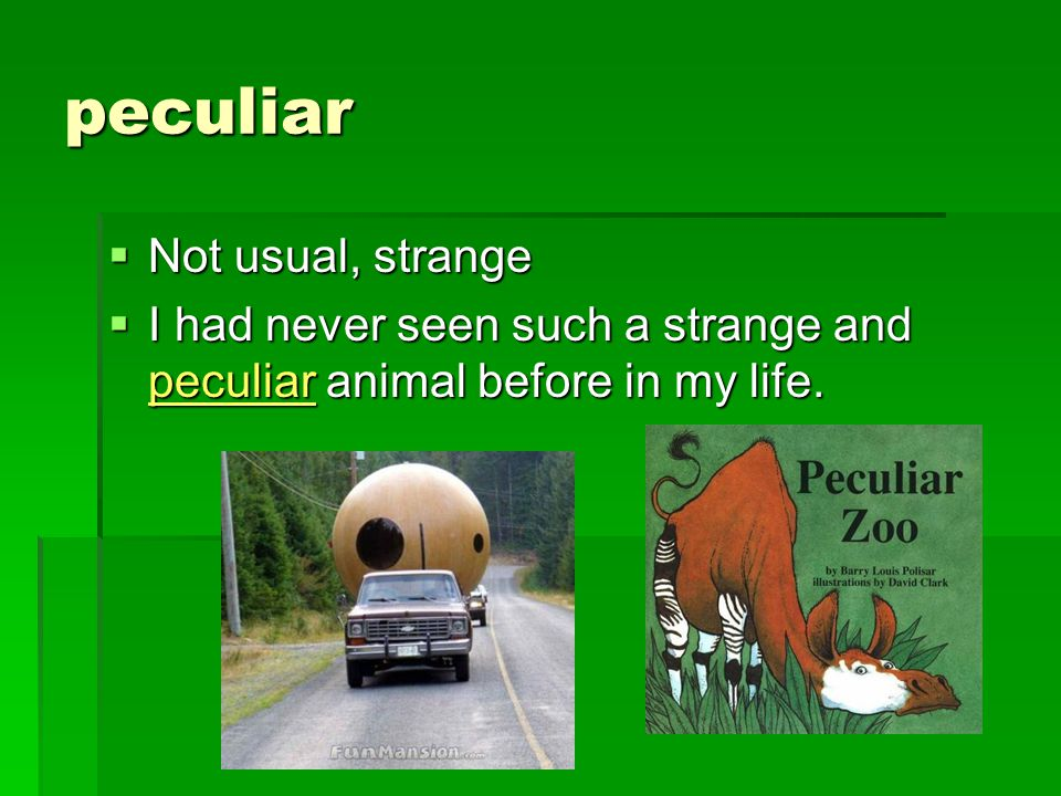 peculiar  Not usual, strange  I had never seen such a strange and peculiar animal before in my life.