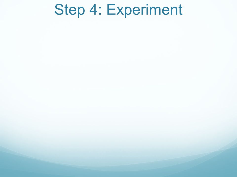 Step 4: Experiment