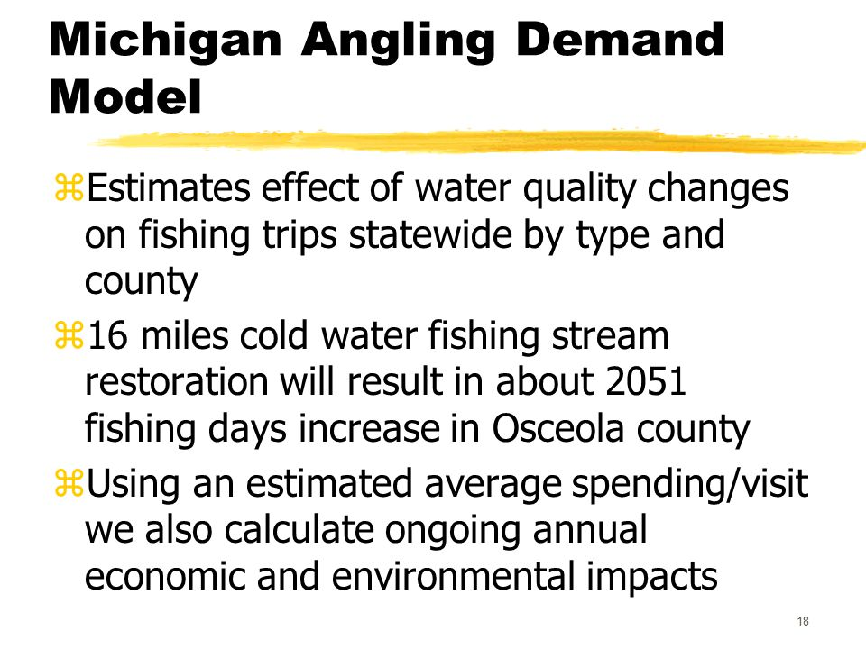 18 Michigan Angling Demand Model zEstimates effect of water quality changes on fishing trips statewide by type and county z16 miles cold water fishing stream restoration will result in about 2051 fishing days increase in Osceola county zUsing an estimated average spending/visit we also calculate ongoing annual economic and environmental impacts