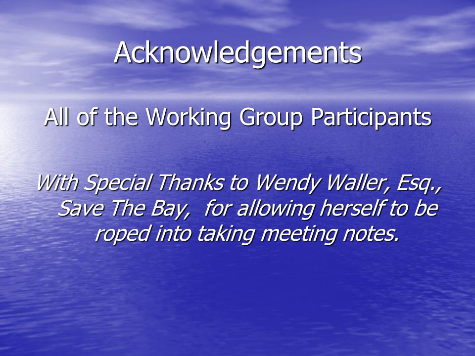 Acknowledgements All of the Working Group Participants With Special Thanks to Wendy Waller, Esq., Save The Bay, for allowing herself to be roped into taking meeting notes.
