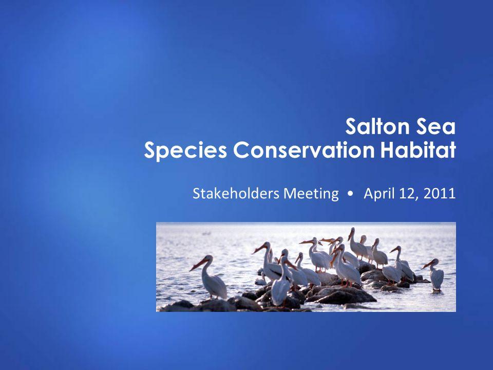 Salton Sea Species Conservation Habitat Stakeholders Meeting April 12, 2011