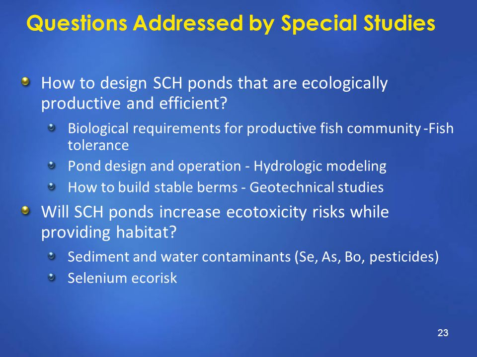 Questions Addressed by Special Studies How to design SCH ponds that are ecologically productive and efficient? Biological requirements for productive