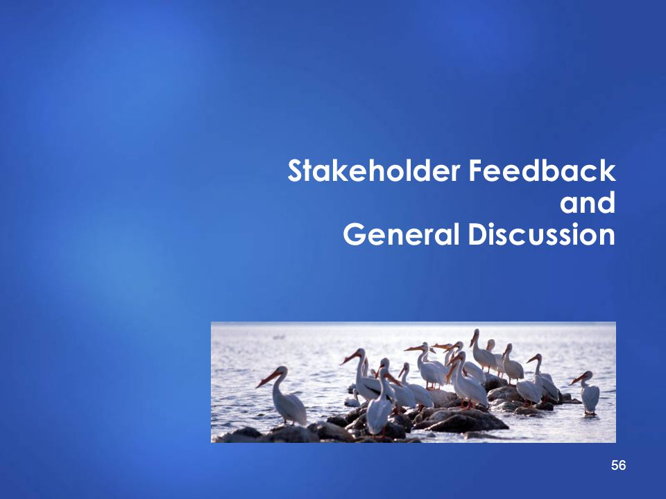 Stakeholder Feedback and General Discussion 56