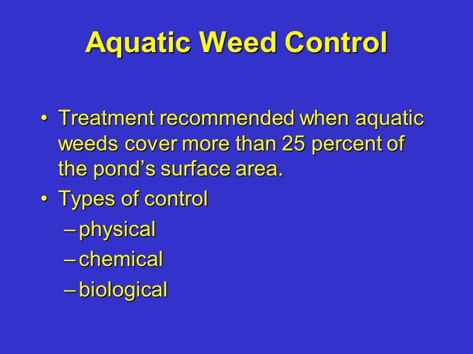 Planktonic algae: essential, cause bloom, shade pond bottom, but can cause fish kills by lowering O 2 Aquaplant