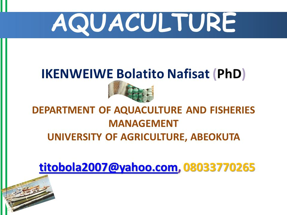IKENWEIWE Bolatito Nafisat (PhD) DEPARTMENT OF AQUACULTURE AND FISHERIES MANAGEMENT UNIVERSITY OF AGRICULTURE, ABEOKUTA AQUACULTURE titobola2007@yahoo