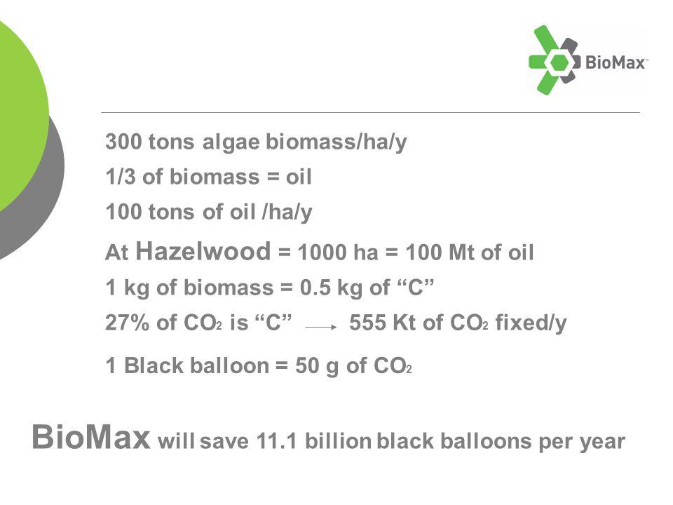 300 tons algae biomass/ha/y 1/3 of biomass = oil 100 tons of oil /ha/y At Hazelwood = 1000 ha = 100 Mt of oil 1 kg of biomass = 0.5 kg of C 27% of CO 2 is C 555 Kt of CO 2 fixed/y 1 Black balloon = 50 g of CO 2 BioMax will save 11.1 billion black balloons per year