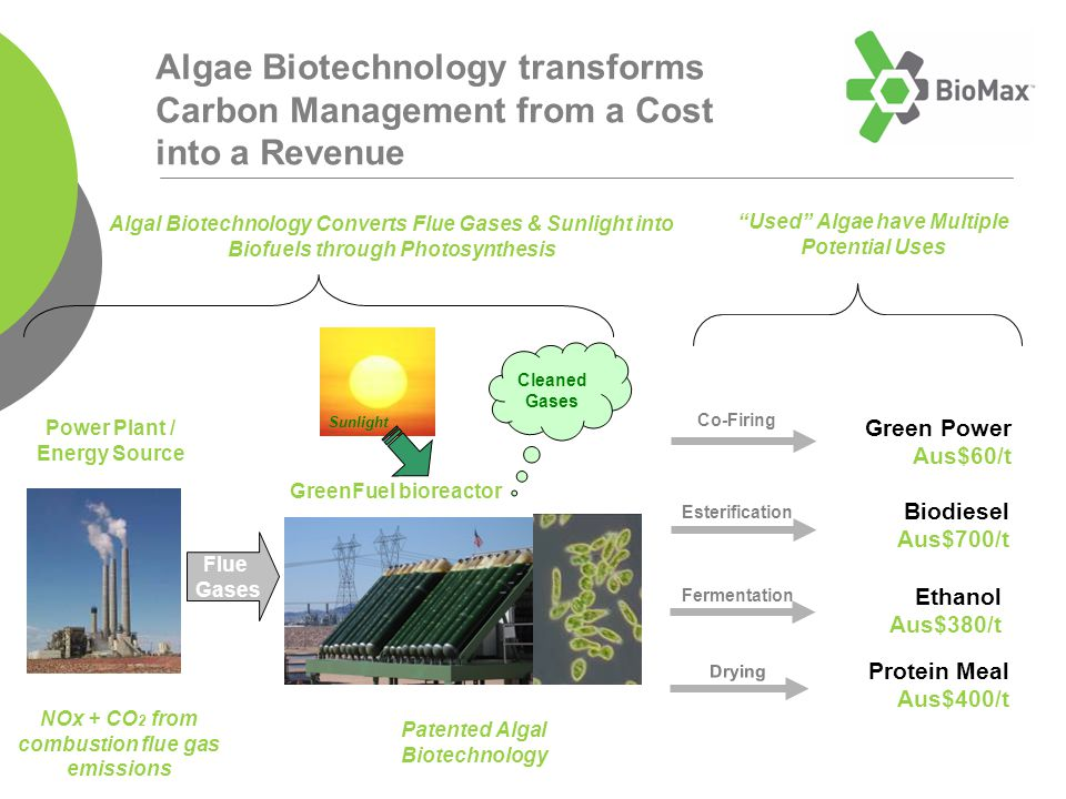 Algae Biotechnology transforms Carbon Management from a Cost into a Revenue Power Plant / Energy Source Flue Gases NOx + CO 2 from combustion flue gas emissions Patented Algal Biotechnology Cleaned Gases GreenFuel bioreactor Algal Biotechnology Converts Flue Gases & Sunlight into Biofuels through Photosynthesis Used Algae have Multiple Potential Uses Sunlight Co-Firing Fermentation Esterification Drying Green Power Aus$60/t Biodiesel Aus$700/t Ethanol Aus$380/t Protein Meal Aus$400/t