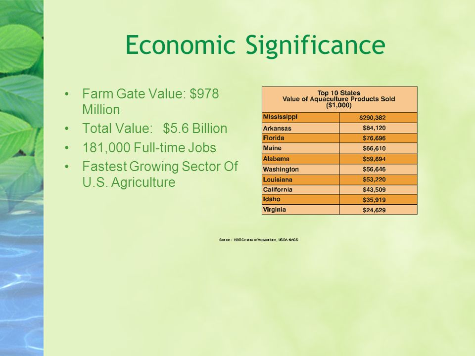 Economic Significance Farm Gate Value: $978 Million Total Value: $5.6 Billion 181,000 Full-time Jobs Fastest Growing Sector Of U.S.