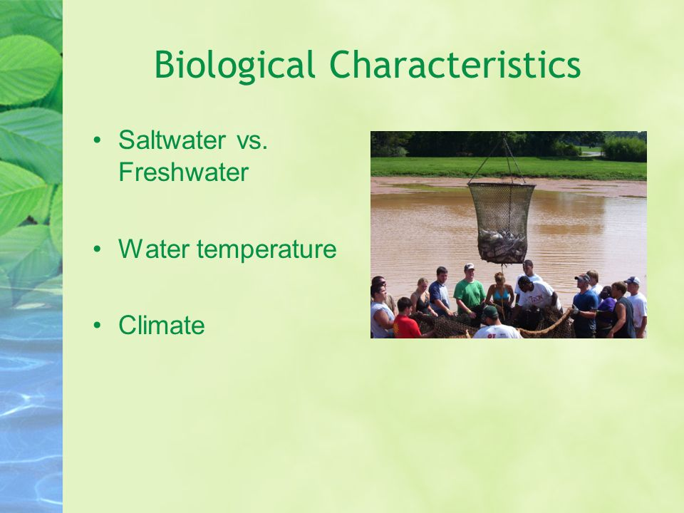 Biological Characteristics Saltwater vs. Freshwater Water temperature Climate
