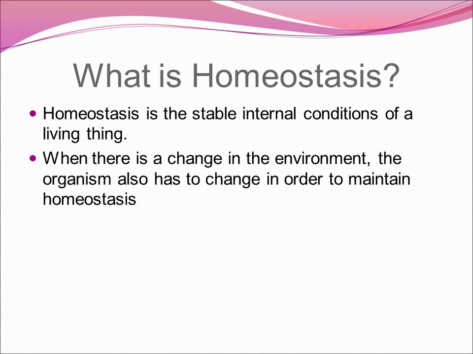 What genetic background helps and organism maintain homeostasis.
