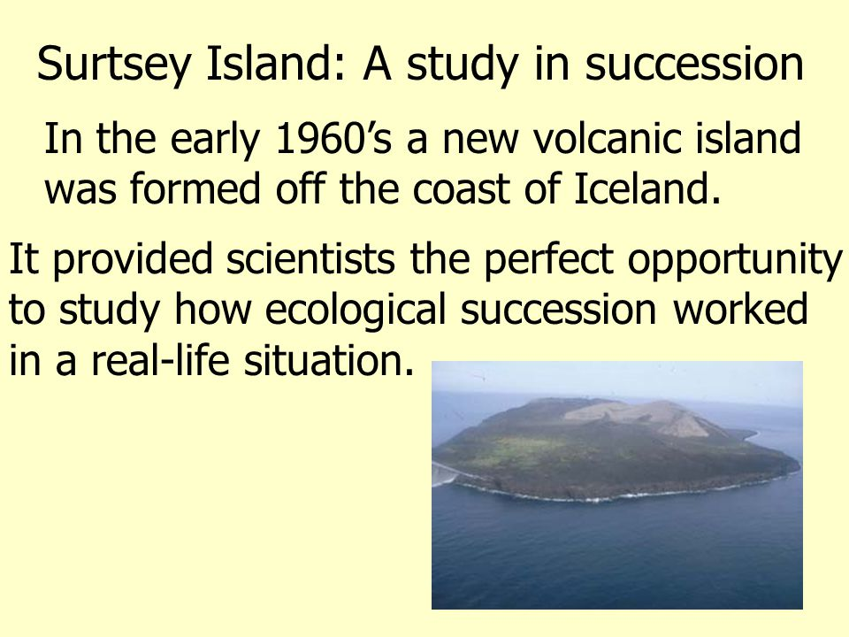 1969: Two years after the initial eruptions ceased.