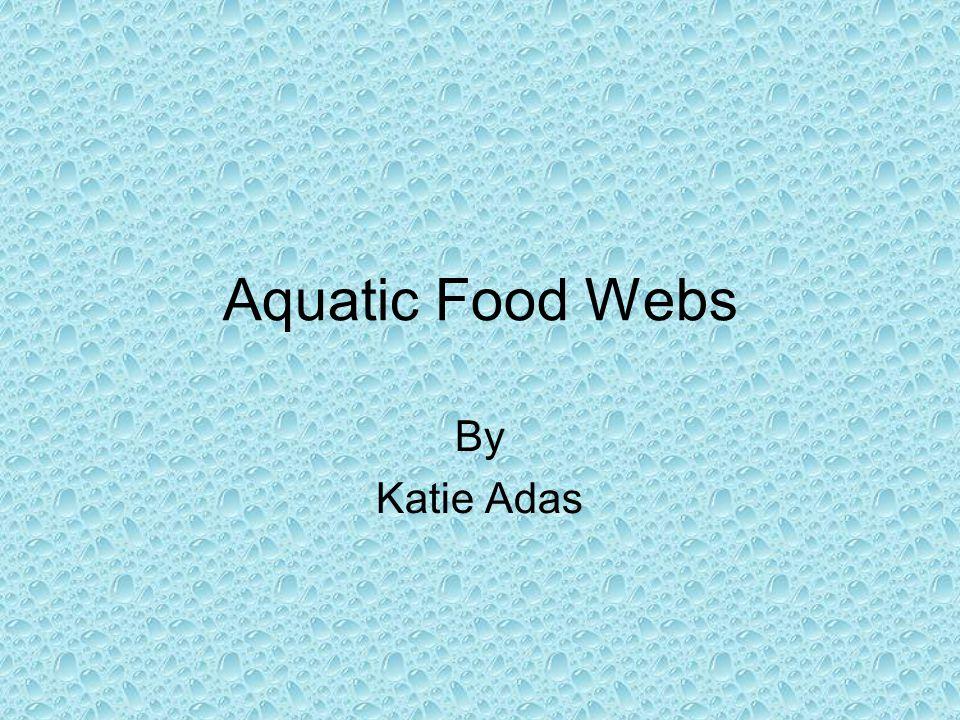 Aquatic Food Webs By Katie Adas