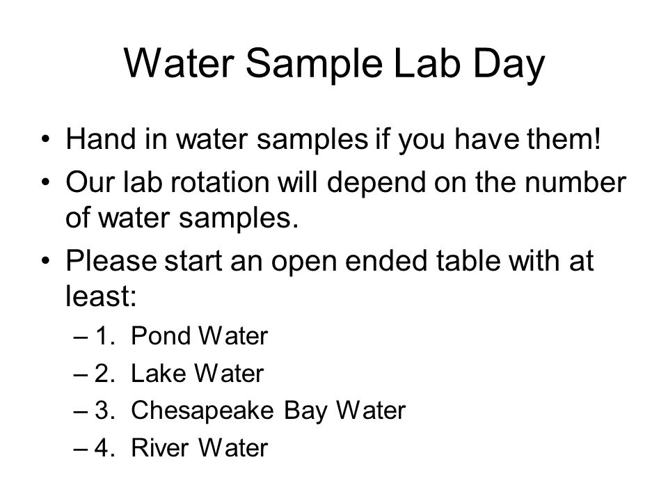 Water Sample Lab Day Hand in water samples if you have them.