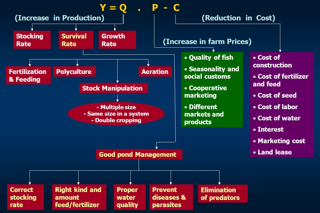 (Increase in Production) Stocking Rate Survival Rate Growth Rate (Reduction in Cost) Cost of construction Cost of fertilizer and feed Cost of seed Cos