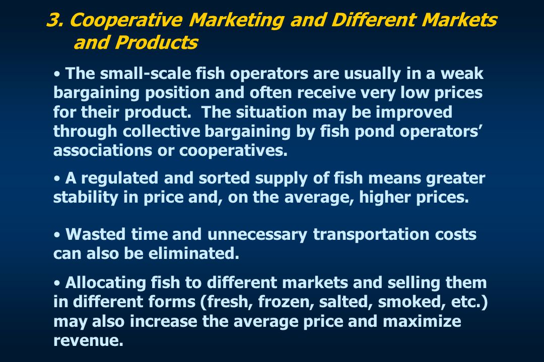 3. Cooperative Marketing and Different Markets and Products The small-scale fish operators are usually in a weak bargaining position and often receive