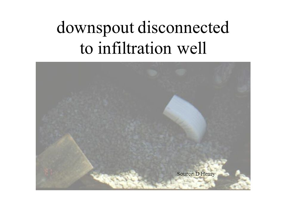 downspout disconnected to infiltration well Source: D Henry