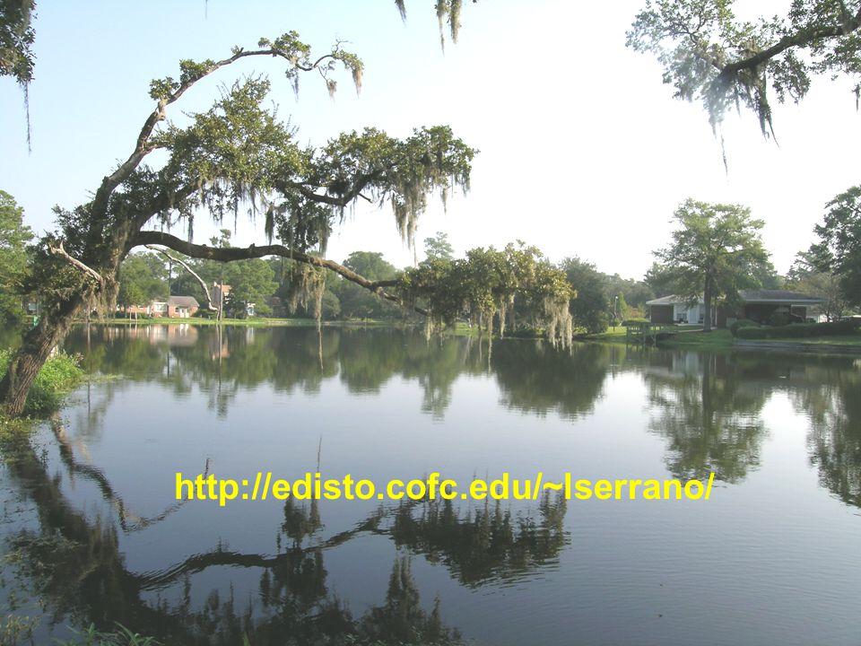 http://edisto.cofc.edu/~lserrano/