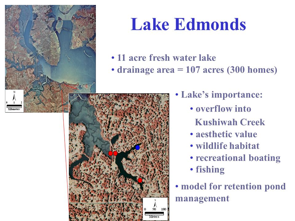 11 acre fresh water lake drainage area = 107 acres (300 homes) Lake's importance: overflow into Kushiwah Creek aesthetic value wildlife habitat recreational boating fishing model for retention pond management Lake Edmonds