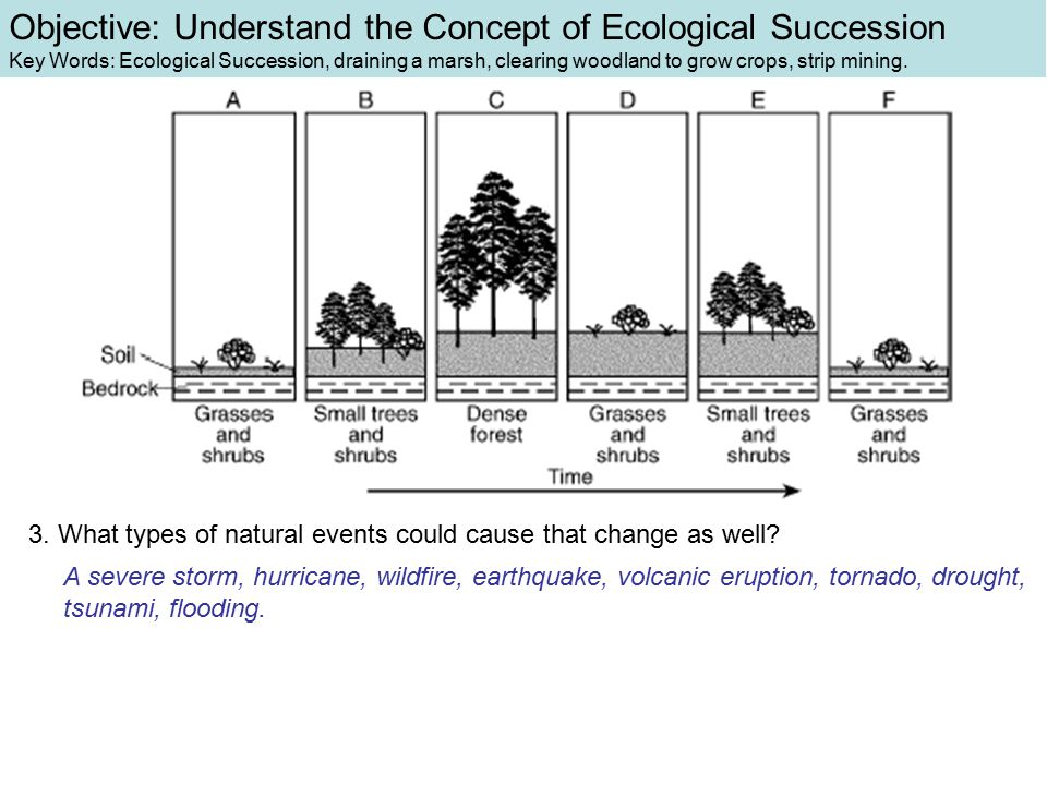 3. What types of natural events could cause that change as well? A severe storm, hurricane, wildfire, earthquake, volcanic eruption, tornado, drought,
