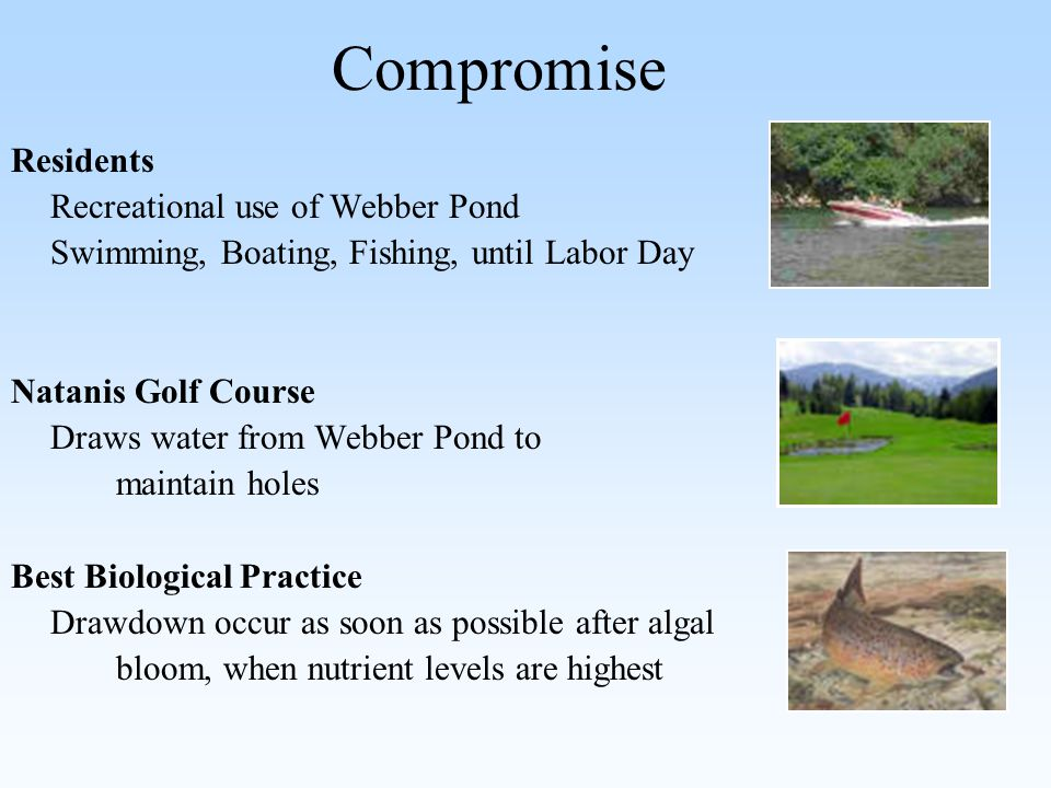 Compromise Residents Recreational use of Webber Pond Swimming, Boating, Fishing, until Labor Day Natanis Golf Course Draws water from Webber Pond to maintain holes Best Biological Practice Drawdown occur as soon as possible after algal bloom, when nutrient levels are highest