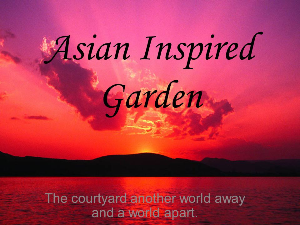 Asian Inspired Garden The courtyard another world away and a world apart.