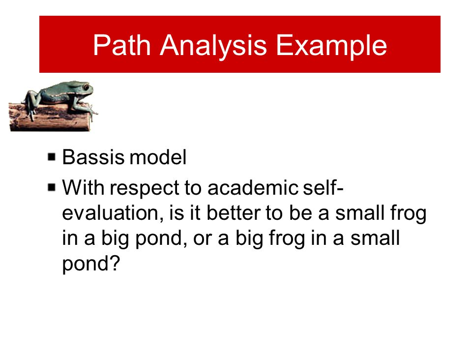 Path Analysis Example Bassis model With respect to academic self- evaluation, is it better to be a small frog in a big pond, or a big frog in a small pond?