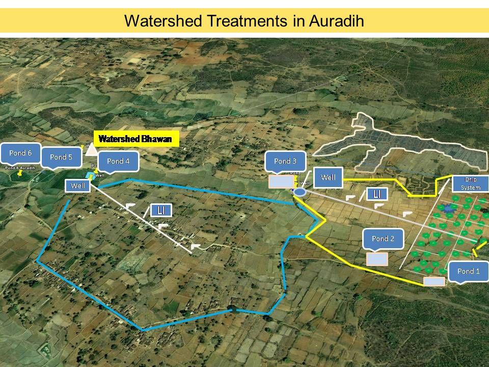 Impact: Village Auradih Sl.ParticularsPre-watershedPost- watershed 1.Net Sown Area101 ha.(42% of Total land area) 178 ha.