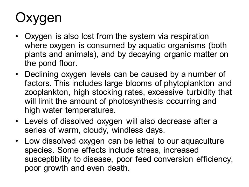 Oxygen Oxygen is also lost from the system via respiration where oxygen is consumed by aquatic organisms (both plants and animals), and by decaying or