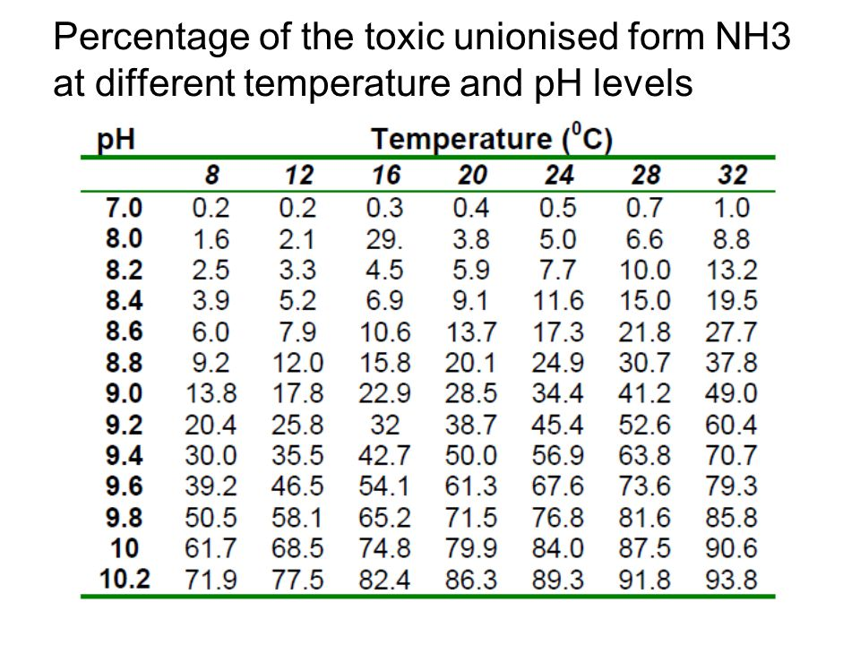 Percentage of the toxic unionised form NH3 at different temperature and pH levels