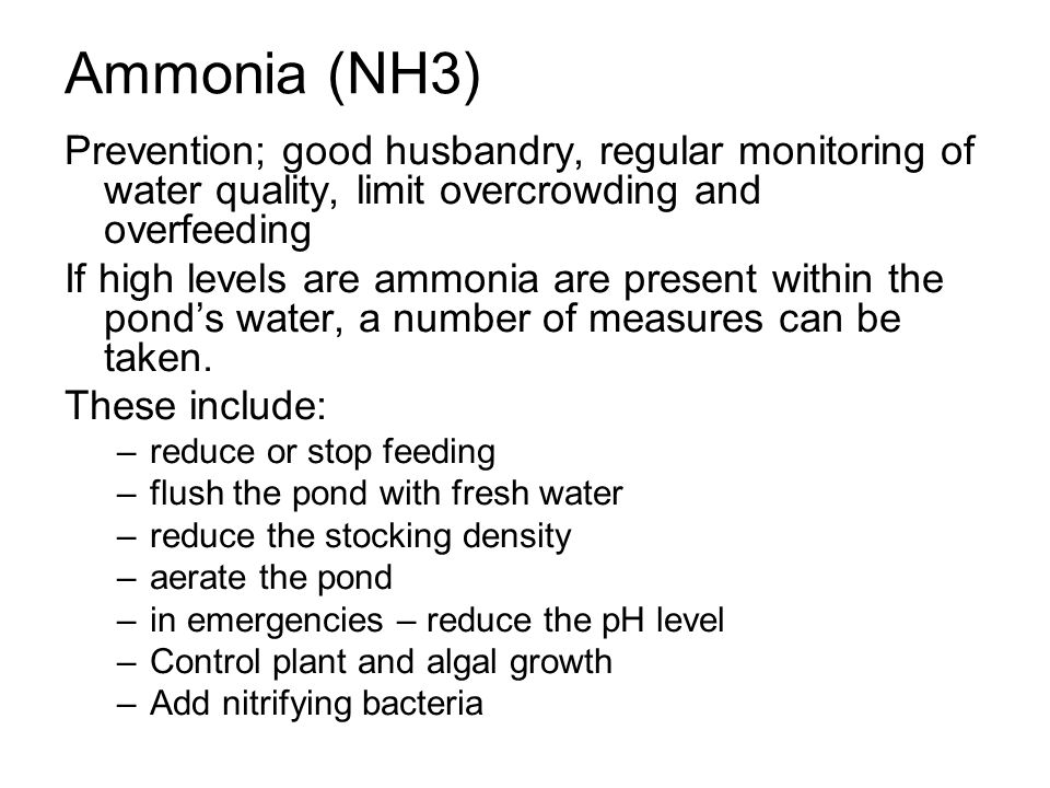 Ammonia (NH3) Prevention; good husbandry, regular monitoring of water quality, limit overcrowding and overfeeding If high levels are ammonia are prese