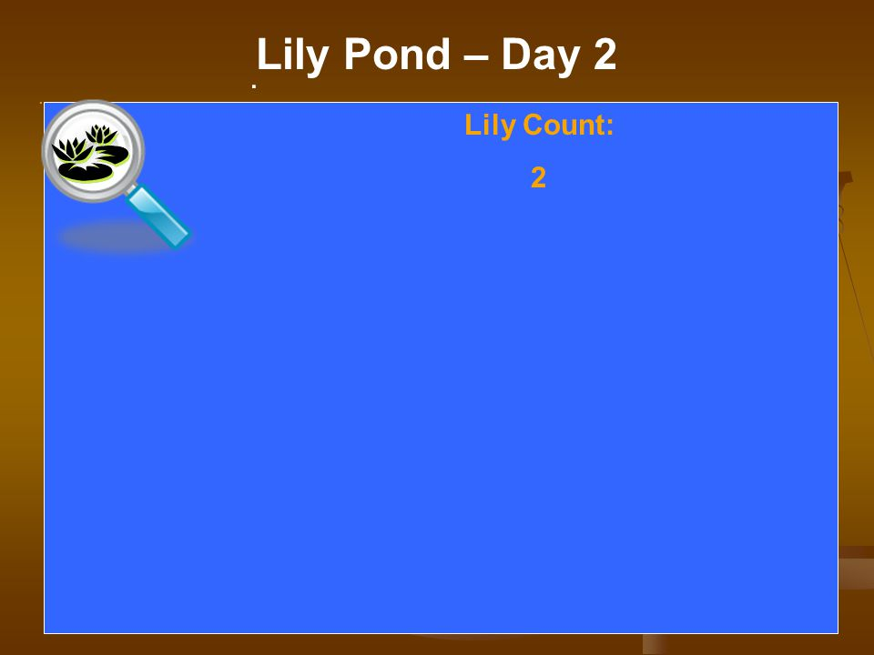 . Lily Pond – Day 2. Lily Count: 2