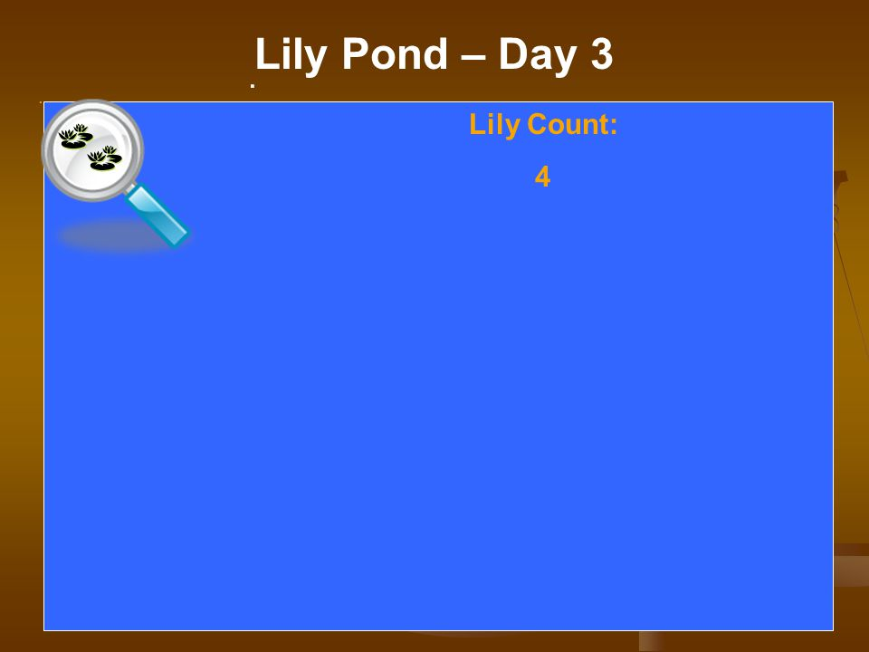 . Lily Pond – Day 3. Lily Count: 4