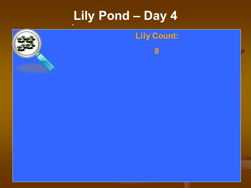 . Lily Pond – Day 4. Lily Count: 8