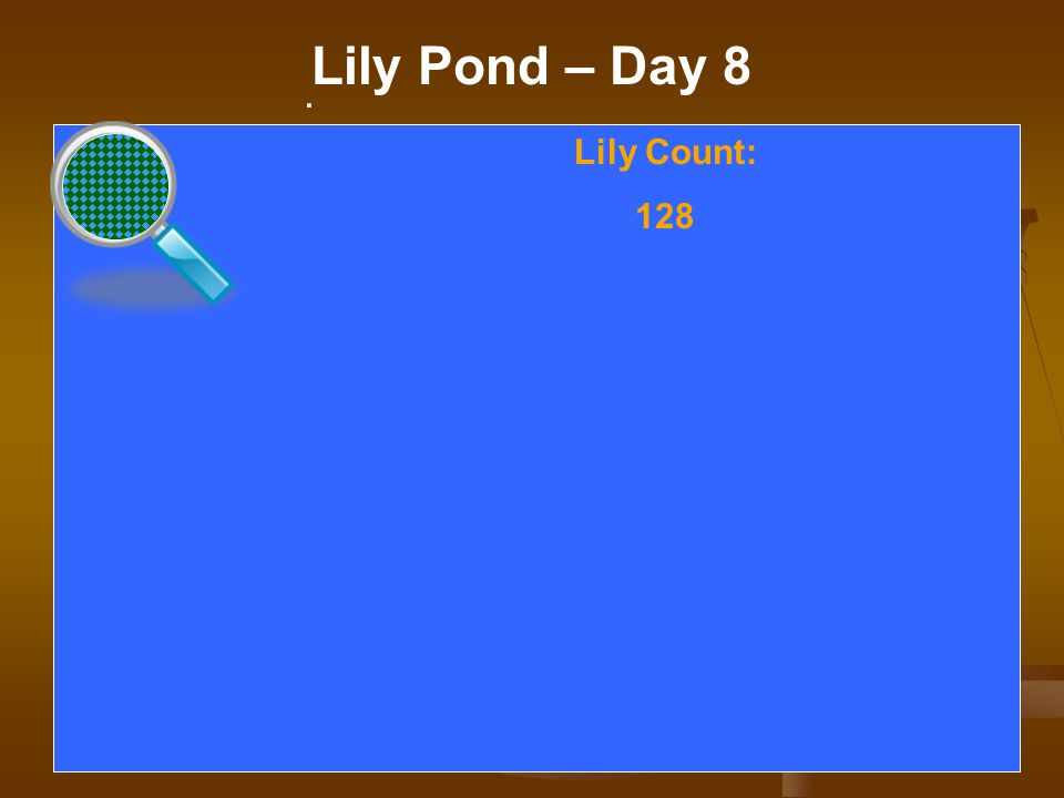. Lily Pond – Day 8. Lily Count: 128