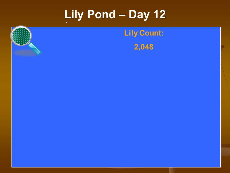. Lily Pond – Day 12. Lily Count: 2,048